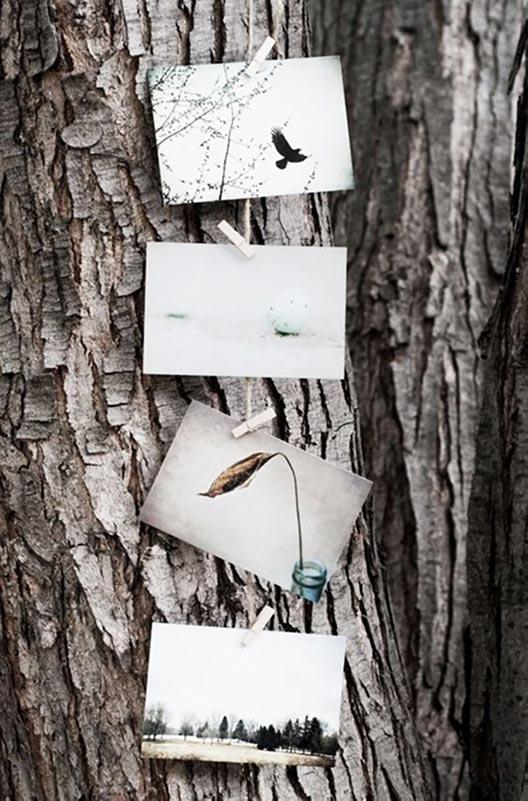 uitvaart1001lichtjes wensboom laatste boodschap afscheid