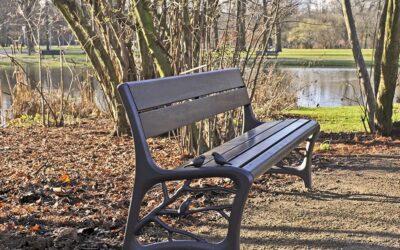 Gedenkbankje in Vondelpark